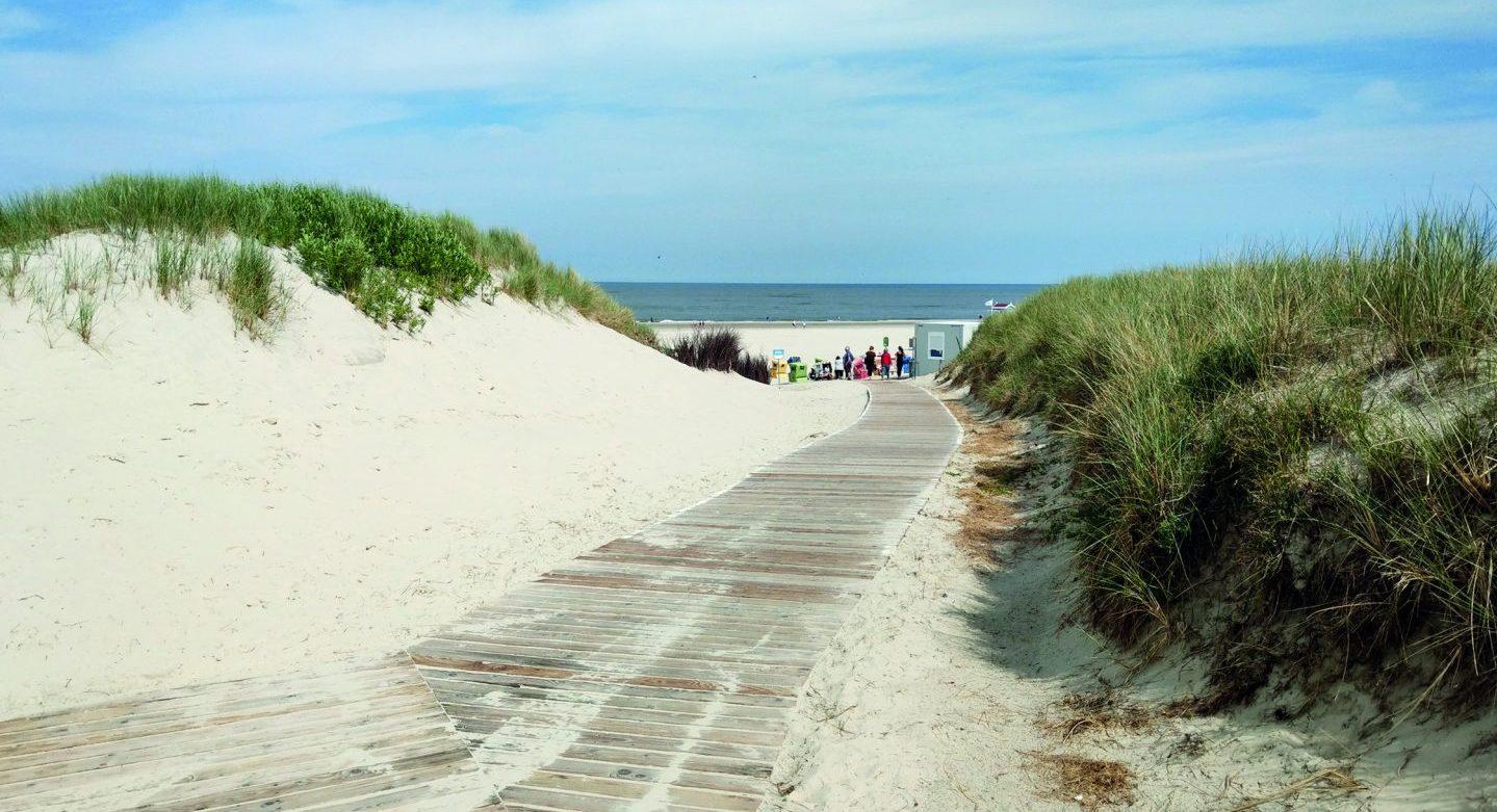 Spazierwege aus Holzbohlen führen durch die Dünenlandschaft und am Strand entlang