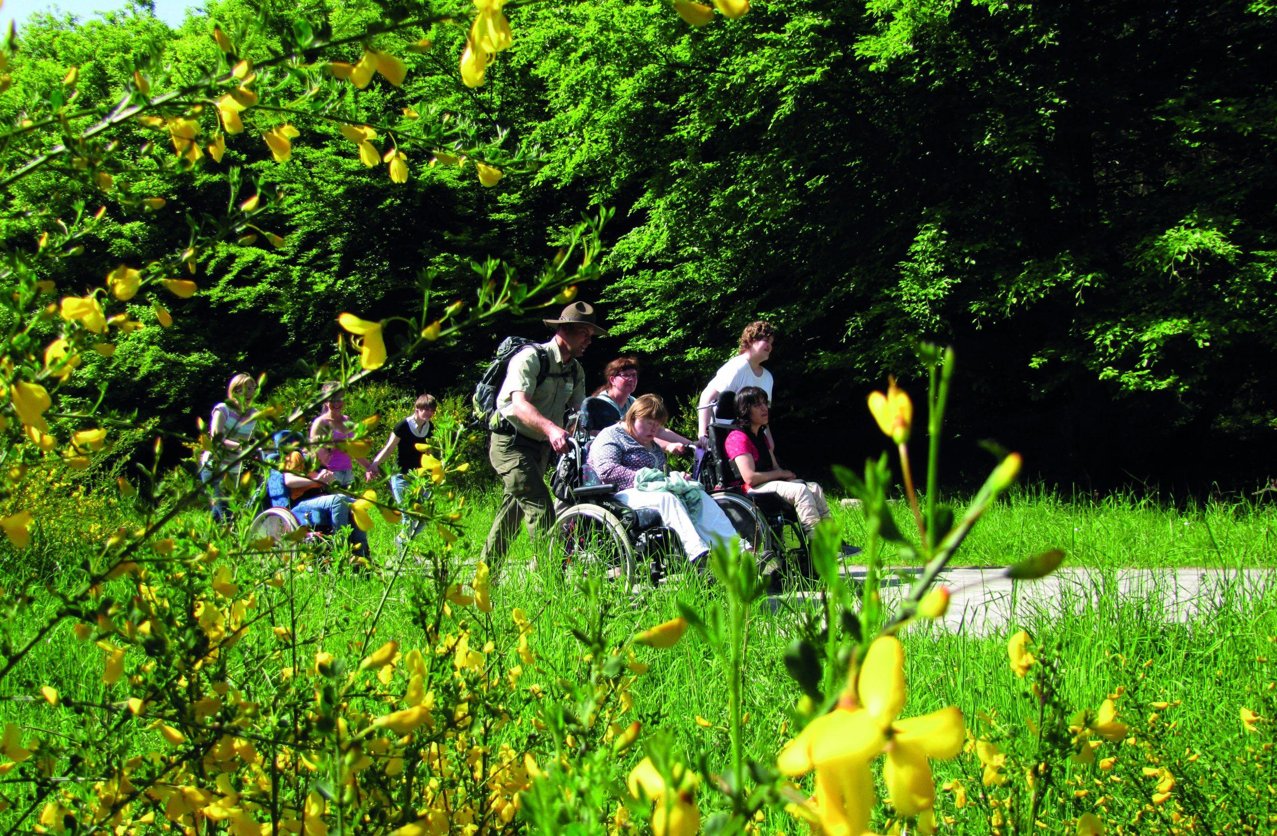 Reisegruppe mit Rollstuhl durchwandert die Natur