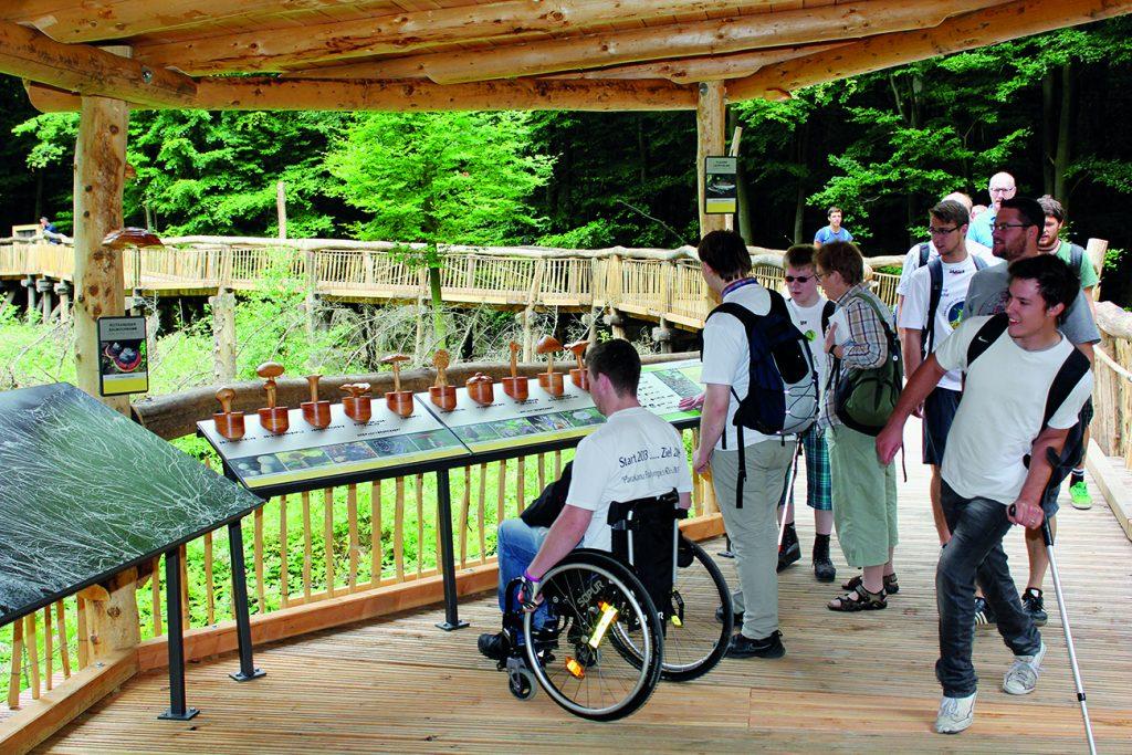 Rollstuhlfahrer auf prepariertem Weg durch einen Nationalpark